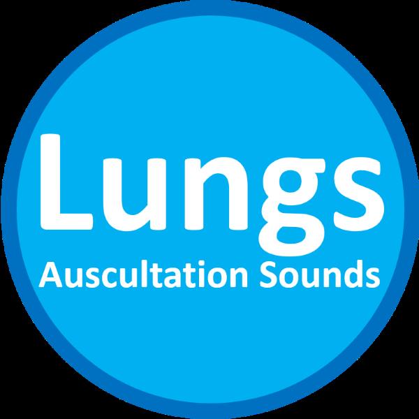 lung auscultation sound